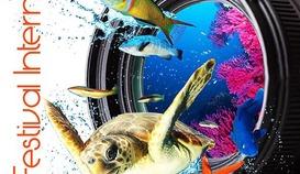 Festival international d'Hyères du monde sous-marin et du patrimoine maritime