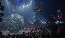 Cirque Arlette Gruss à Hyères