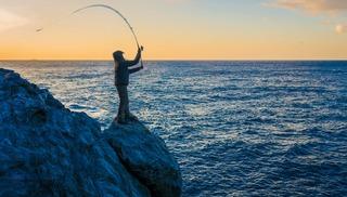 Latitude Pêche, guide de pêche - Hyères