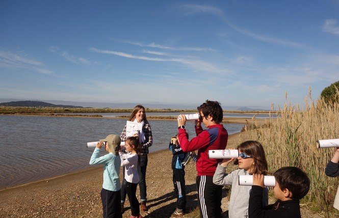 Visite guidée spécial enfants: Au pays du sel 2 - Hyères