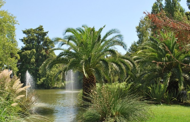 Le parc Olbius Riquier 23 - Hyères