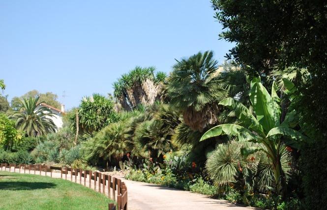 Le parc Olbius Riquier 21 - Hyères