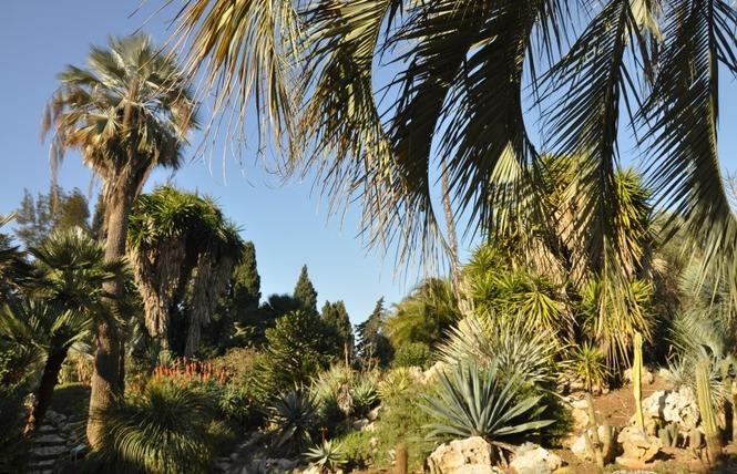 Le parc Olbius Riquier 13 - Hyères