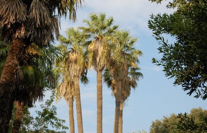 Le parc Olbius Riquier 20 - Hyères