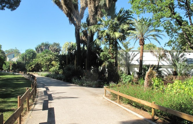 Le parc Olbius Riquier 12 - Hyères